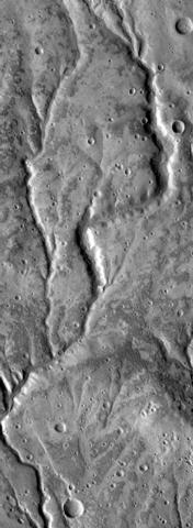 Channels near Warrego in Thaumasia.JPG