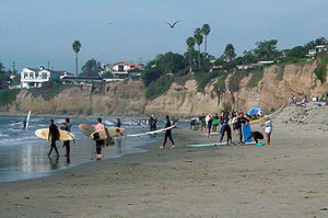 Several people, some wearing full length suits and carrying surf boards, on a beachfront with houses visible above them