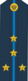 RFAF - Captain - Every day blue.png