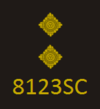 CoLP New Rank Insignia - Special Inspector.png