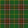 Tartan of Newfoundland and Labrador.png