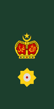 Lieutenant Colonel of Malaysian Army.png