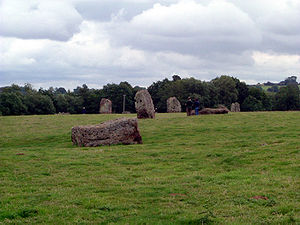standing grey stones in a grassy field with trees in the distance