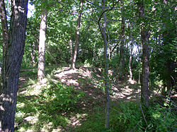 Rowlandtown Mound with pit dug by archaeologists HRoe 2003 01.jpg