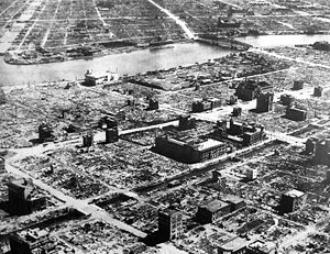 A vast devastated area with only a few burned out buildings standing