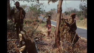 three soldiers in a wood by roadside with machine gun
