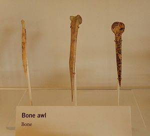 A color picture of three long bone tools