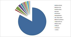 Pie chart with main body in blue and multiple smaller segments in other colours.