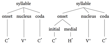 Syllable onset nucleus coda.png