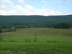 A Middle Paxton Township vista from Boyd Big Tree Preserve Conservation Area