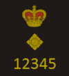 CoLP New Rank Insignia - Chief Superintendent.png