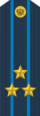 RFAF - Colonel - Every day blue.png