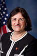 Anne McLane Kuster, Official Portrait, 113th Congress.jpg
